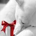 Открытка С Днём рождения!