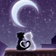 Открытка Ночная романтика